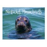 Cape Cod, Nantucket, Massachusetts Seal Postcard
