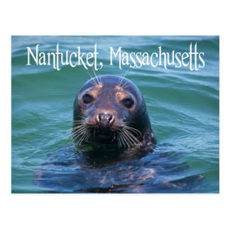 Cape Cod, Nantucket, Massachusetts Seal Postcard