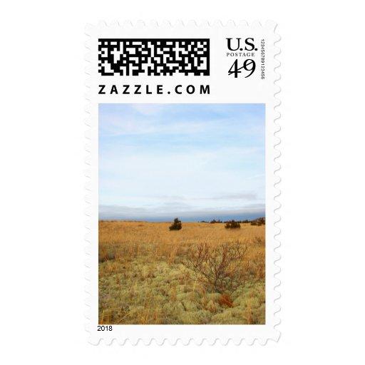 Cape Cod Salt Marsh Postage Stamps