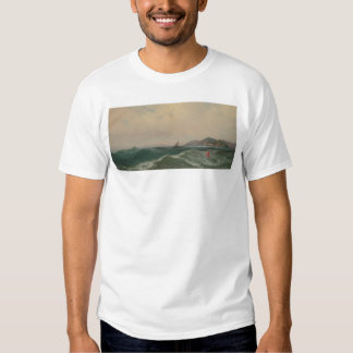 Cape Disappointment (1248) Shirt