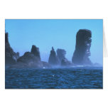 Cape Flattery Greeting Card