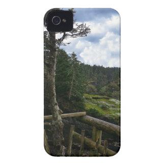 Cape Flattery Olympic Peninsula - Washington iPhone 4 Cover