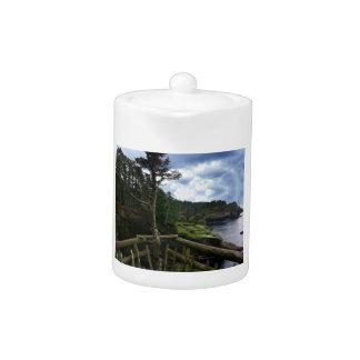 Cape Flattery Olympic Peninsula - Washington Teapot