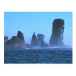 Cape Flattery Post Cards