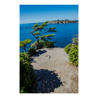 Cape Flattery Poster