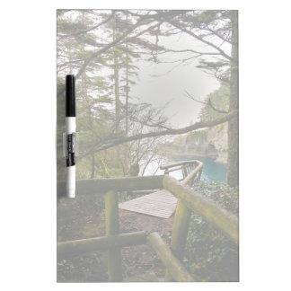 Cape Flattery Trail Olympic Peninsula Dry-Erase Board