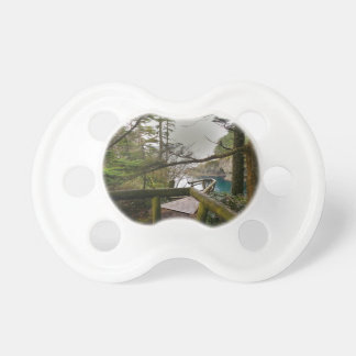 Cape Flattery Trail Olympic Peninsula Pacifier