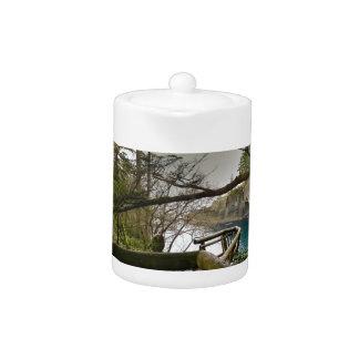 Cape Flattery Trail Olympic Peninsula Teapot
