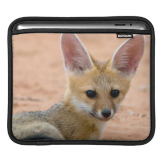 Cape Fox (Vulpes Chama) Pup Peers Inquisitively iPad Sleeve
