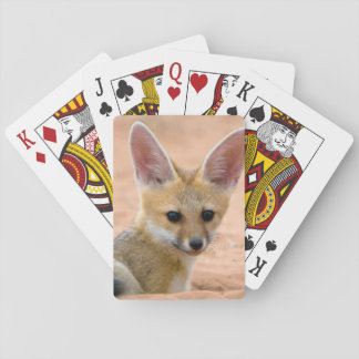 Cape Fox (Vulpes Chama) Pup Peers Inquisitively Card Decks
