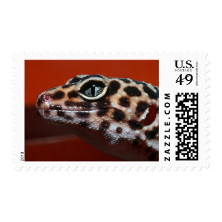Cape Gecko (Pachydactylus Capensis) Profile Postage Stamp