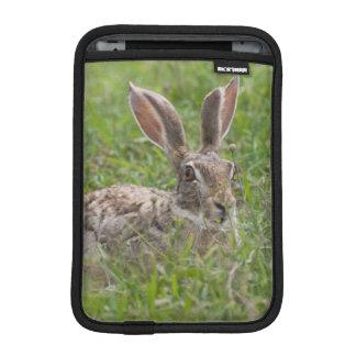 Cape Hare, Ngorongoro Conservation Area, Arusha iPad Mini Sleeve