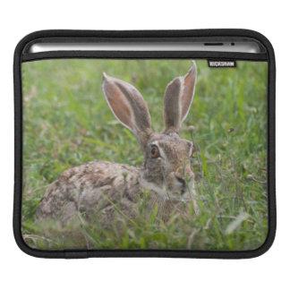 Cape Hare, Ngorongoro Conservation Area, Arusha iPad Sleeve