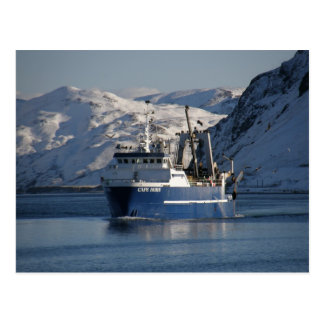 Cape Horn, Factory Trawler in Dutch Harbor, AK Postcard