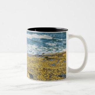 Cape Kiwanda And The Pacific Ocean Two-Tone Coffee Mug