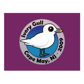 Ivory Gull Post Cards