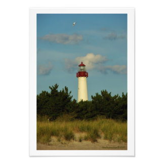 Cape May Lighthouse Photo