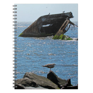 Cape May Shipwreck Notebook