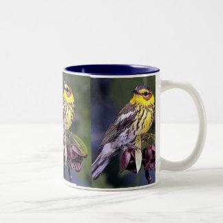 Cape May Warbler, Bird Birds Mug