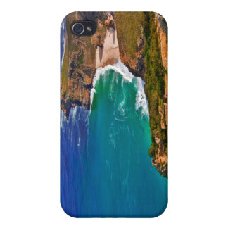 Cape Point, South Africa - iPhone 4 Case