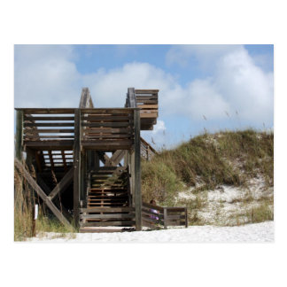 Cape San Blas Florida Dunewalk from beach side Post Cards