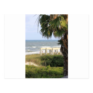 Cape San Blas Ocean Sea Mermaid Salt   Postcard