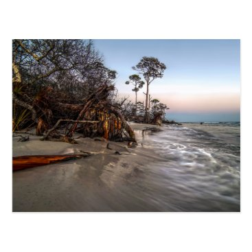 Cape San Blas Postcard