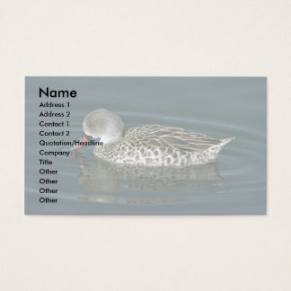 Cape Teal Business Card