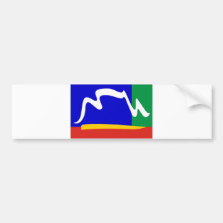 cape town city flag bumper sticker