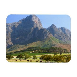 Cape Town, Western Cape, Suráfrica Imanes Flexibles