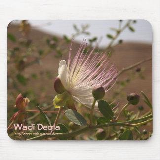 Caper-flower @ Wadi Degla Mouse Pads