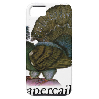 Capercaillie bird, tony fernandes iPhone SE/5/5s case