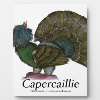 Capercaillie bird, tony fernandes display plaques