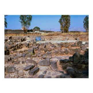 Capernaum, Galilee, archaeological site Poster