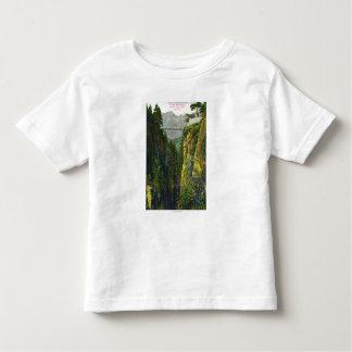 Capilano Canyon View of Crown Mountain Toddler T-shirt