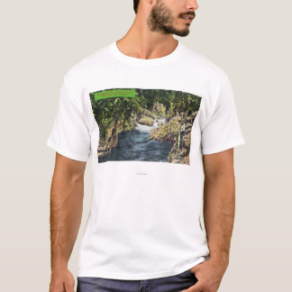 Capilano Canyon View of the Salmon Pool T-Shirt