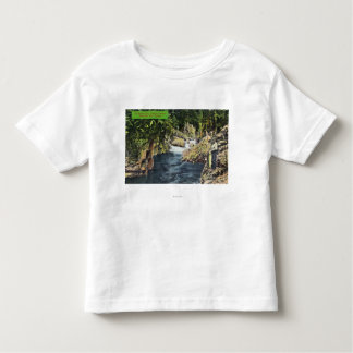 Capilano Canyon View of the Salmon Pool Toddler T-shirt