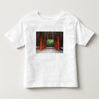 Capilla de Kasuga, Nara, Japón Playera De Bebé