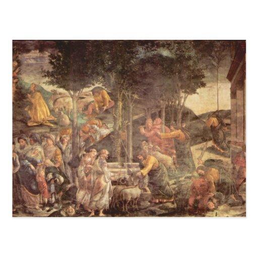 Capilla de Sistine - la juventud de Moses Postal