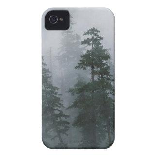 Capilla del soporte de la tormenta de la niebla de iPhone 4 Case-Mate cobertura
