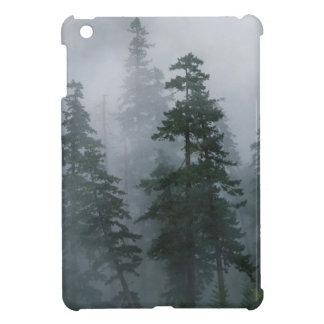 Capilla del soporte de la tormenta de la niebla de