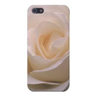 Capilla grandiflora del soporte del rosa iPhone 5 protectores