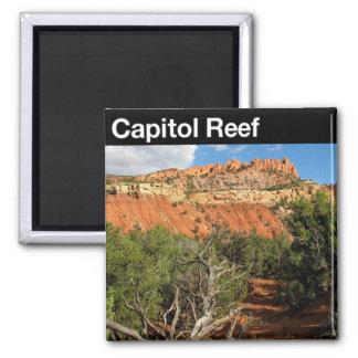 Capital Reef National Park Refrigerator Magnets