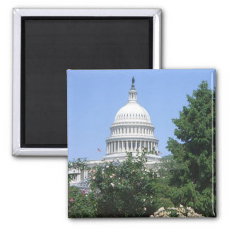 Capitol Building from Bartholdi Park in Washington 2 Inch Square Magnet
