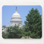 Capitol Building from Bartholdi Park in Washington Mouse Pad