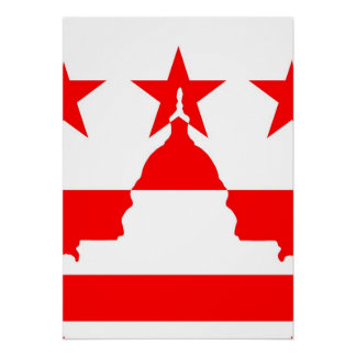 Capitol Building Inverted Poster