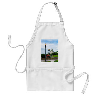 Capitol Building Seen From Waterplace Park Adult Apron