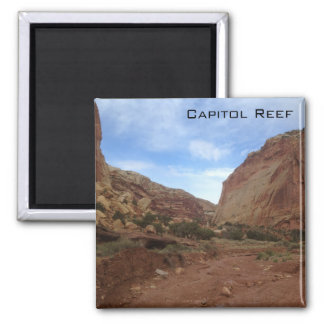 Capitol Reef National Park Magnet