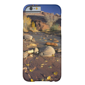 CAPITOL REEF NATIONAL PARK, UT, US, Cottonwood Barely There iPhone 6 Case