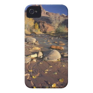 CAPITOL REEF NATIONAL PARK, UT, US, Cottonwood iPhone 4 Cover